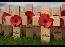 Remembrance Day 11 november